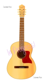 Completed Guitar
